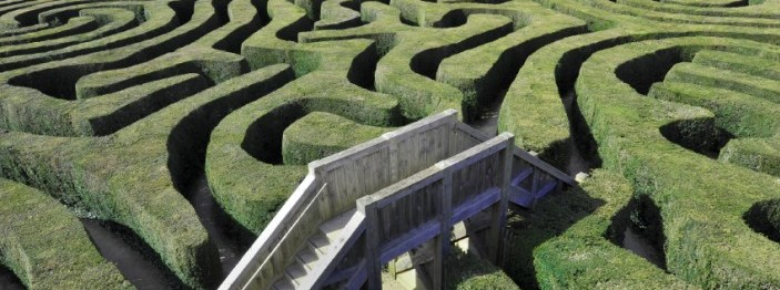 Hedge maze with a walking bridge over it